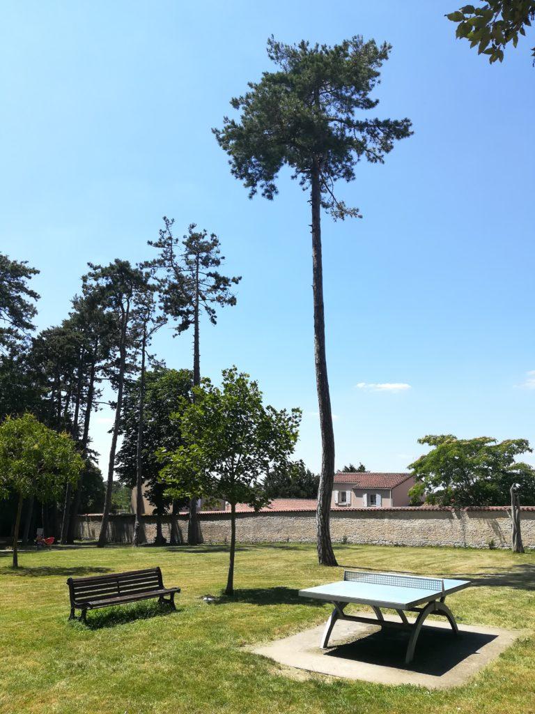 L'historique d'un arbre est à prendre en compte.