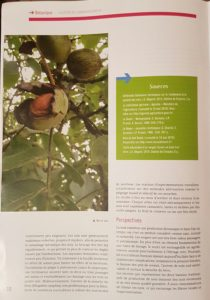 article arboriculture